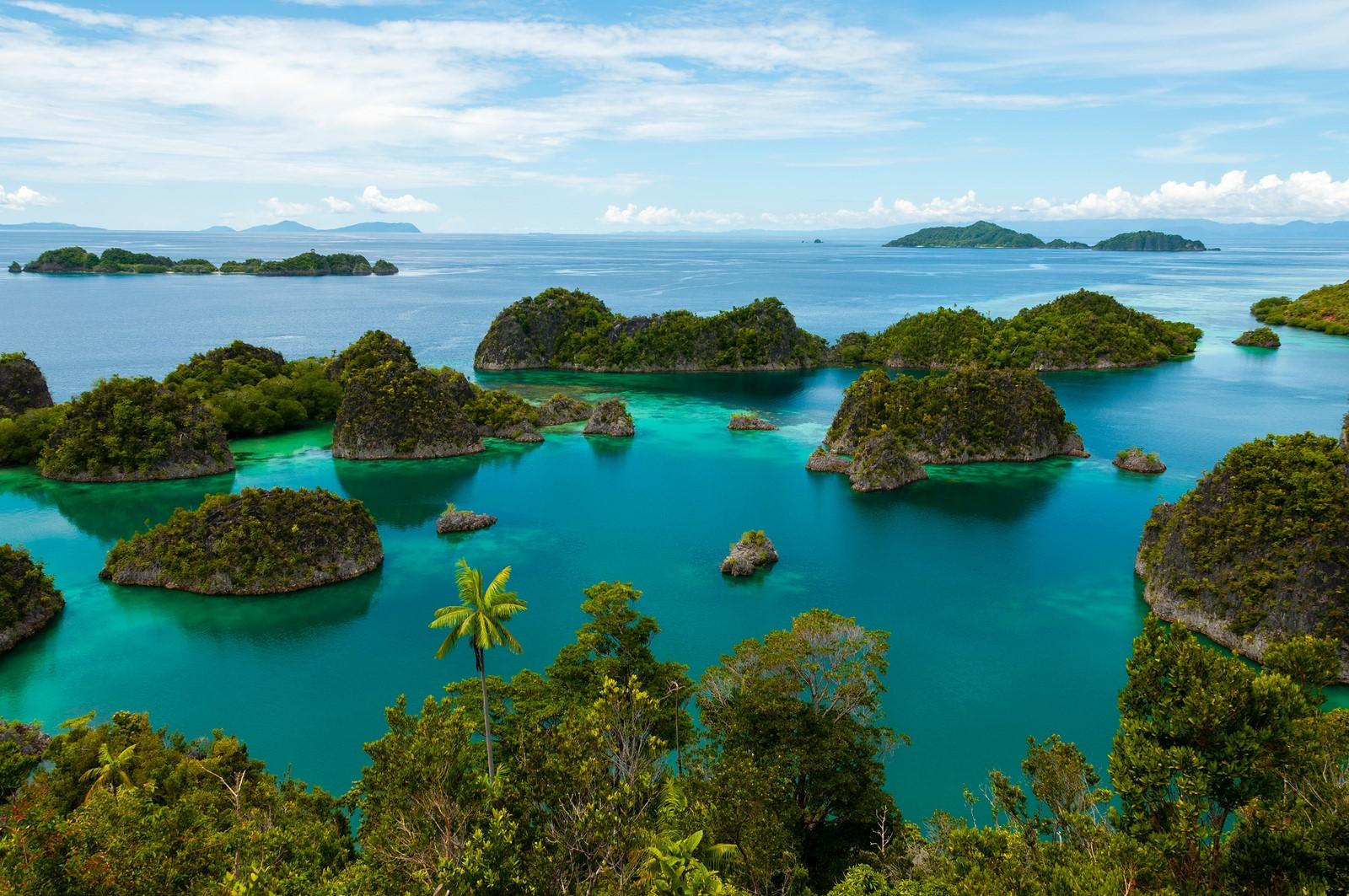 Top  Pacific Islands