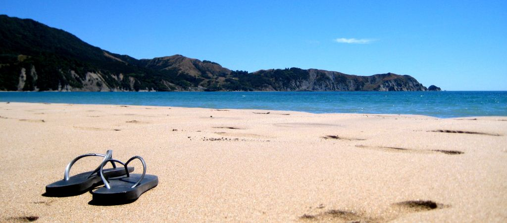 Anura Bay, East Coast, New Zealand- Credit P Jones