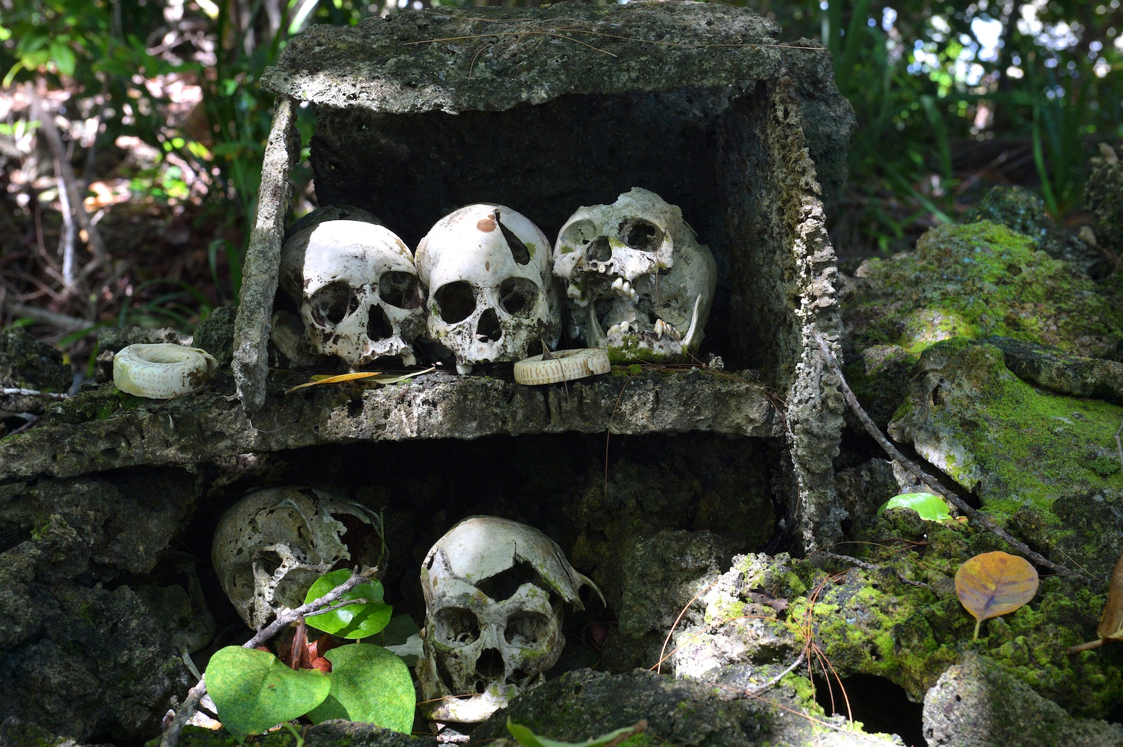 13 – Skulls of ancient chieftains (on top) and their victims (below) – Skull Island, Vona Vona Lagoon, Western Province - Photo credit to Solomon Islands Visitors Bureau (SIVB)