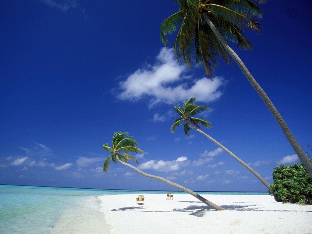 Koh Tao Thailand Island Islands of Koh Tao And The