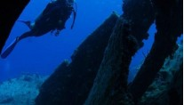 CUAN LAW - Diving