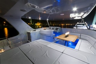 Catamaran EWHALA -  Flybridge