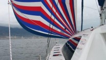 Catamaran SEA LEOPARD -  With Spinaker