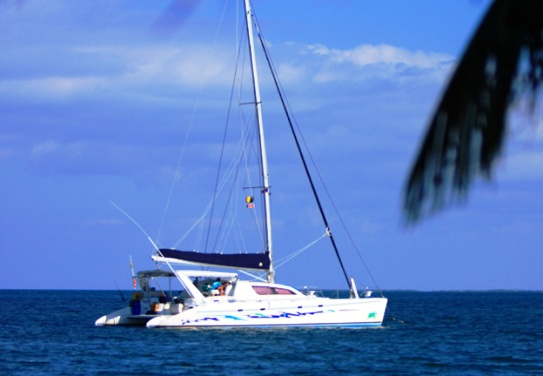 Sailing Catamaran Purrfect One (ex DIVOCEAN)