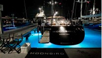Moonbird -  At Night