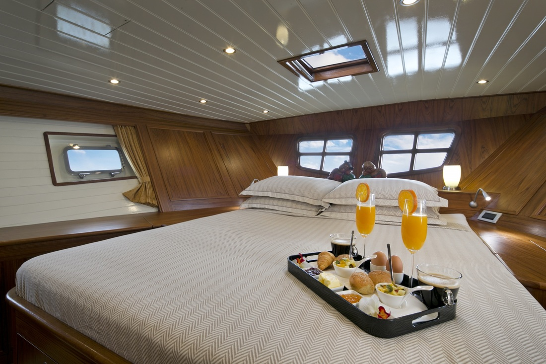Sail yacht domicil master cabin luxury yacht browser for By the cabin catamaran charters