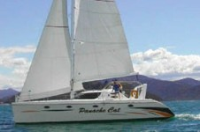 Sailing catamaran - Panache Cat  43