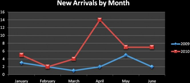 Graph Showing New Arivals by month - Credit Superyacht Singapore Association (SSA)