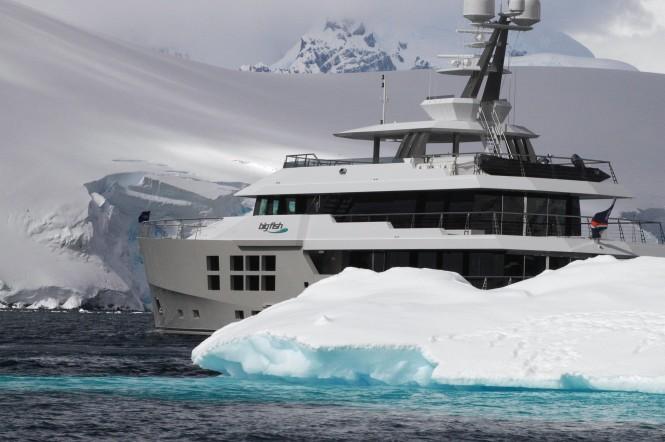 Explorer Yacht Big Fish on charter in Antartica