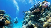 Lizard Island scuba diving