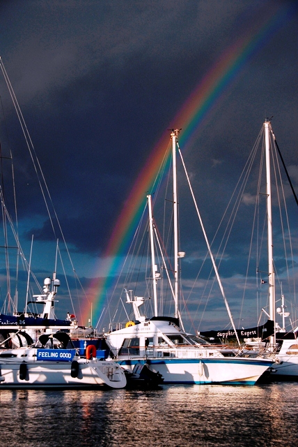Rainbow over Cobb's Quay - MDL Marinas  - Photo by Anne Hayton of Dorset