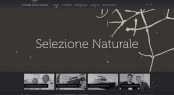 Screenshot of the newly launched Cantiere delle Marche website