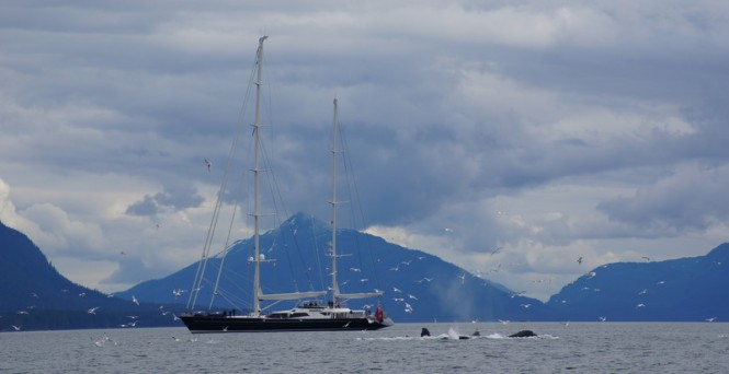 53m luxury charter yacht Drumbeat in Juneau, Alaska
