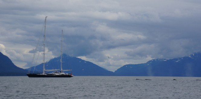 Photo of the Alloy luxury sailing yacht Drumbeat (ex Salperton) in Alaska