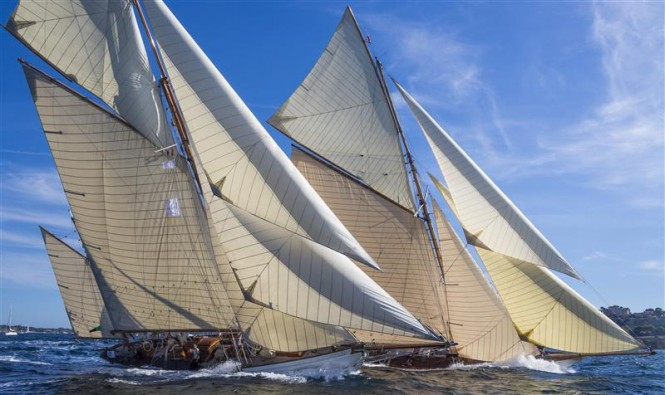 Les Voiles de St Tropez 2012 - Photo credit: Rolex/Carlo Borlenghi