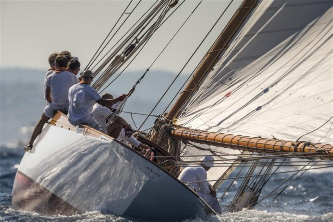 Sailing Yacht AVEL - Photo By- Rolex : Carlo Borlenghi