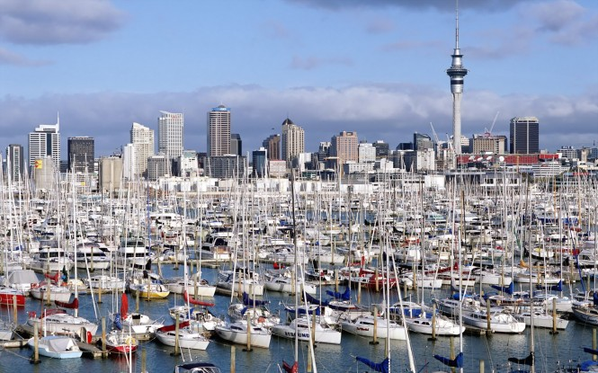 Westhaven Marina Auckland - North Island - New Zealand