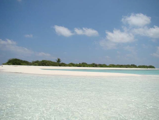 MALDIVES Rhuiveli Baby Island (Bird Island)