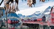 Stockfish - Norway