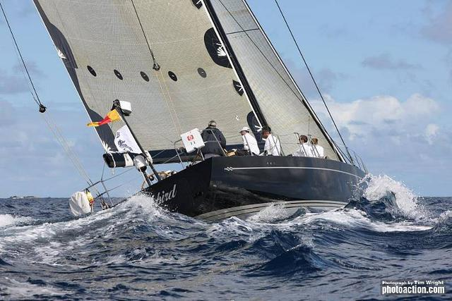 Blackbird yacht competing in RORC Caribbean 600 - Photo by T. Wright/photoaction.com