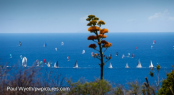 Antigua Sailing Week - Day two
