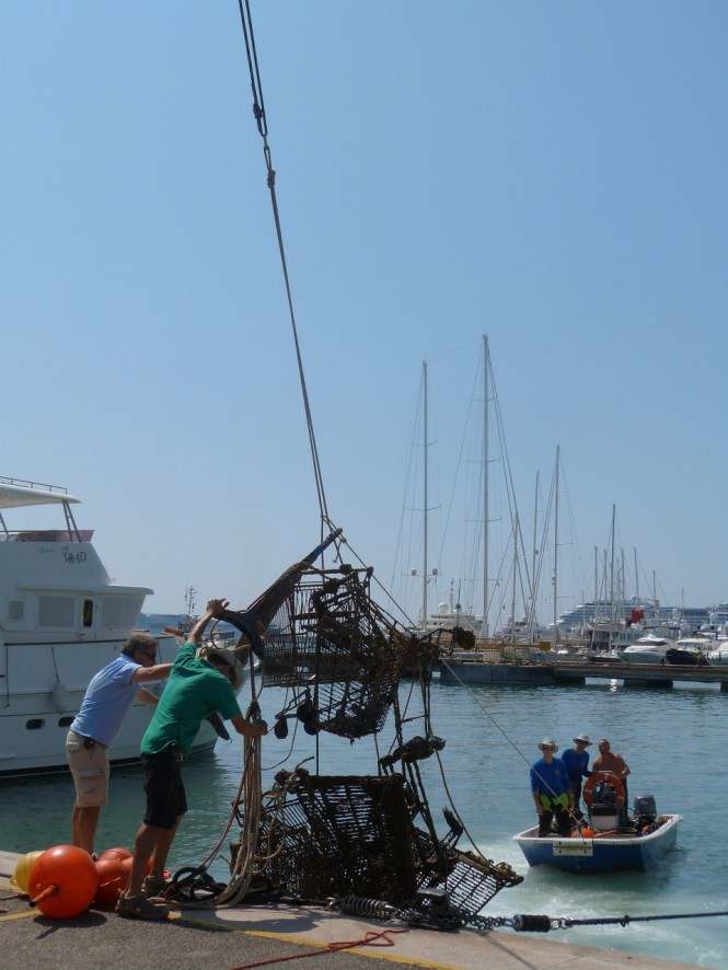 Environmental Day at Marina Port de Mallorca