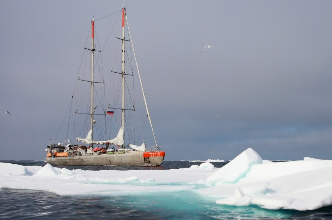 Expedition yacht Tara in the Arctic. Image credit to A. Deniaud/Tara Expeditions