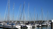 Hamble Point Marina in the lovely Europe yacht charter destination - England