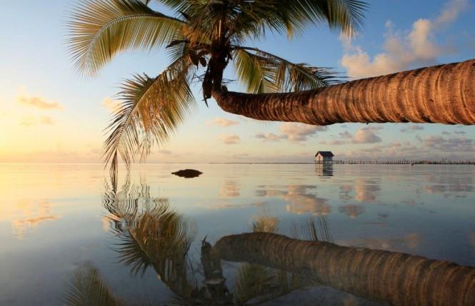 Gregoire Le Bacon, Tahiti