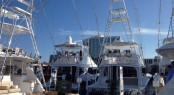 Hatteras yachts on display at FLIBS 2014