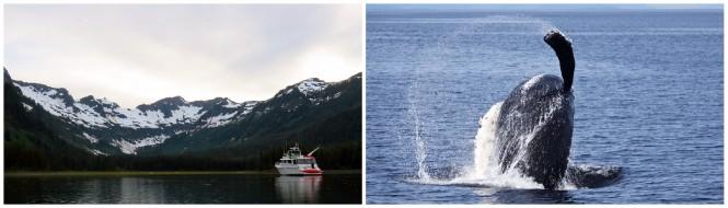 Experience Alaska yacht vacation aboard VIAGGIO yacht