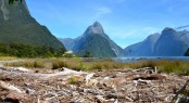 Milford, a beautiful New Zealand yacht rental destination