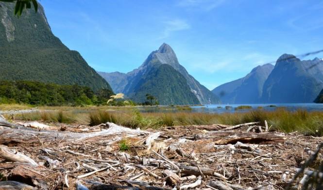 Milford, a beautiful New Zealand yacht rental destination