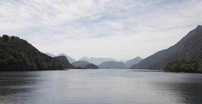 New Zealand's Fiorland dusky