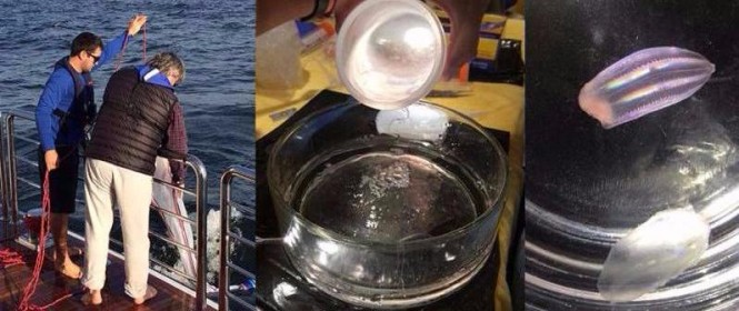 Photos from the expedition aboard Penny Mae
