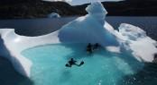 Scuba diving at Disko Bay in Greenland