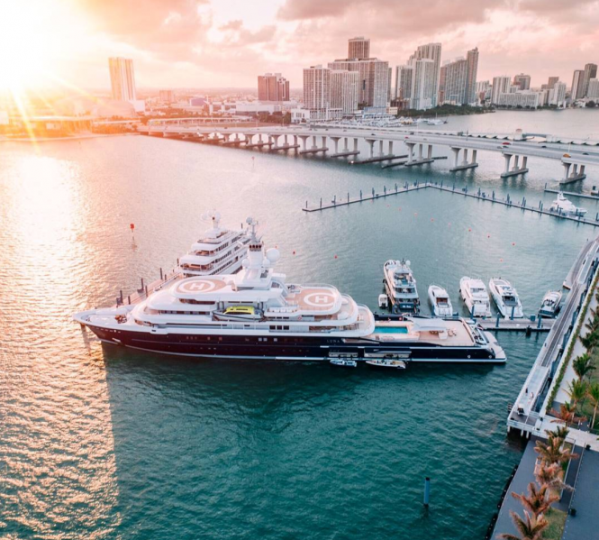 Luna in Miami. Photo by @flye_drones