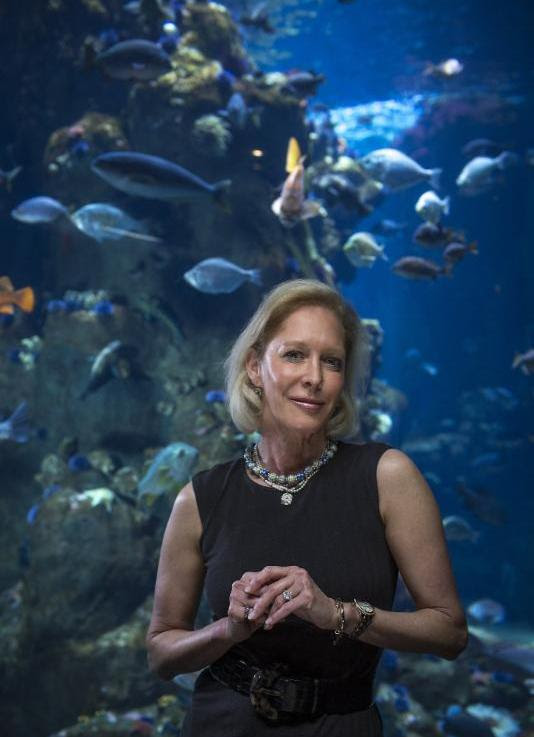 Wendy Schmidt - SeaKeeper of the Year 2017