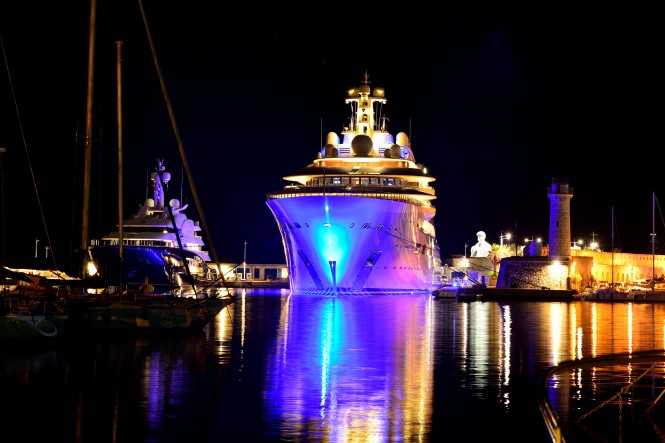 Dilbar. Photo credit Chris Suffeleers