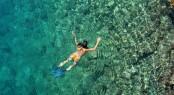 Sexy Woman Snorkeling