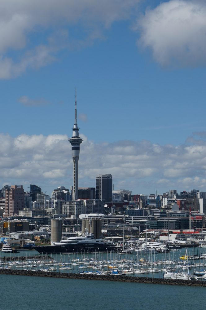 Auckland harbour and marina