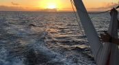 Axioma sunset Grenadines