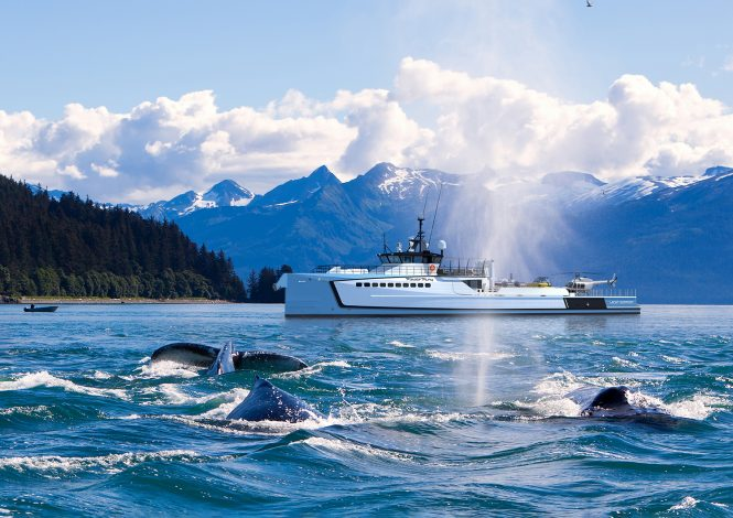 DAMEN yacht support vessel POWER-PLAY with whales