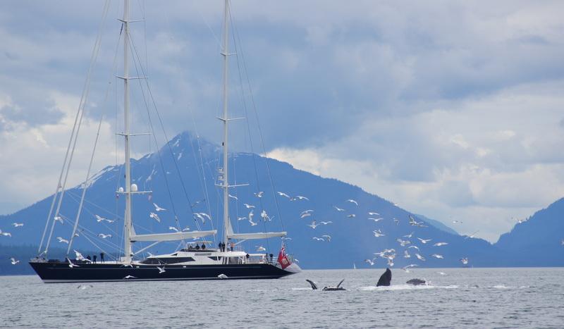 Dubois designed 174ft superyacht Drumbeat