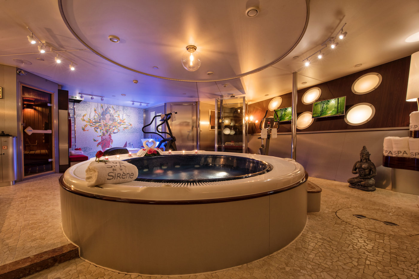 Spa With Jacuzzi And Gym