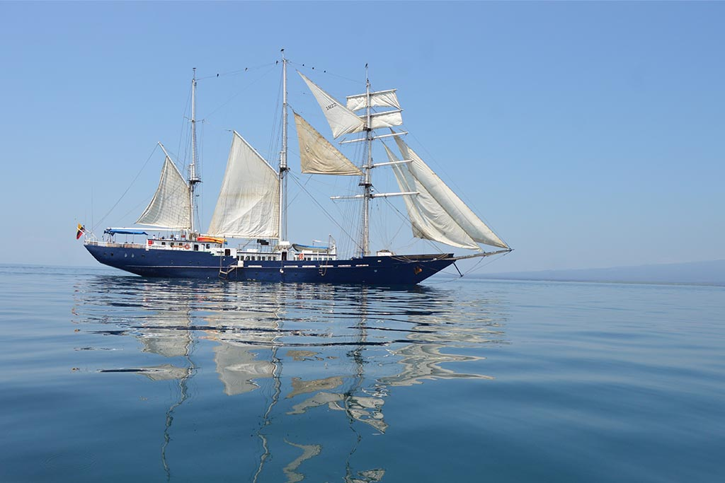 Mary Anne Full Sails