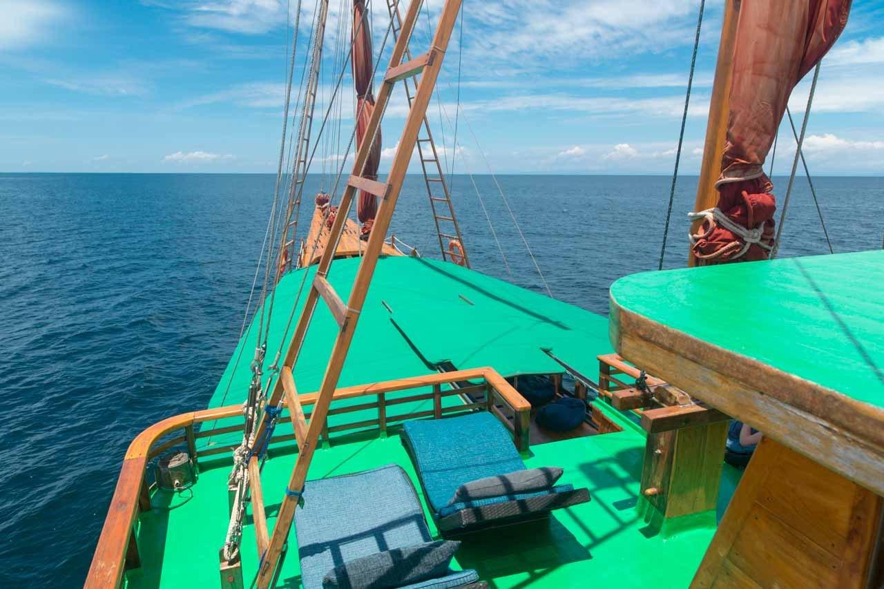 Tiger Blue Life Onboard