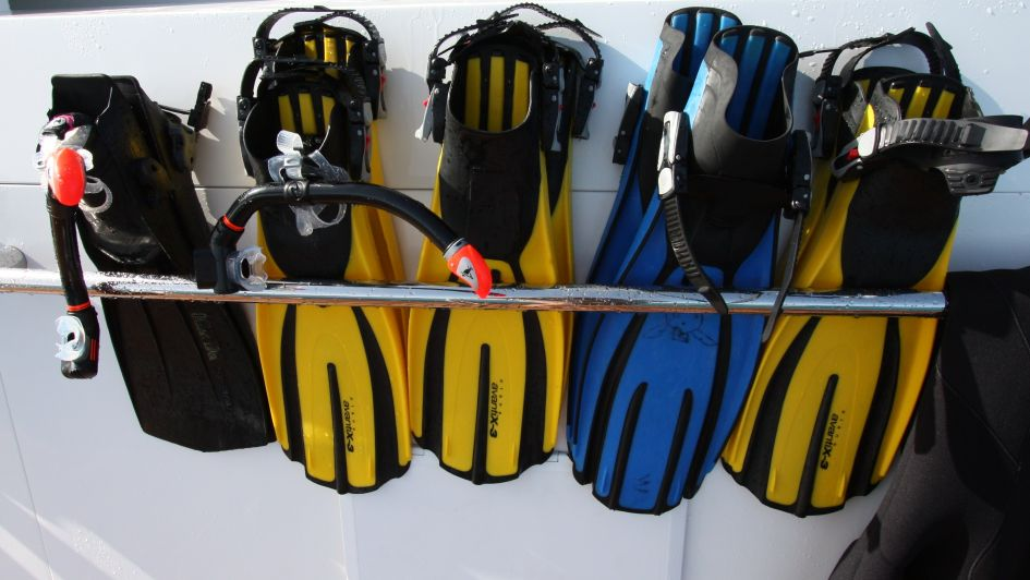 Water Activities - Snorkelling Equipment