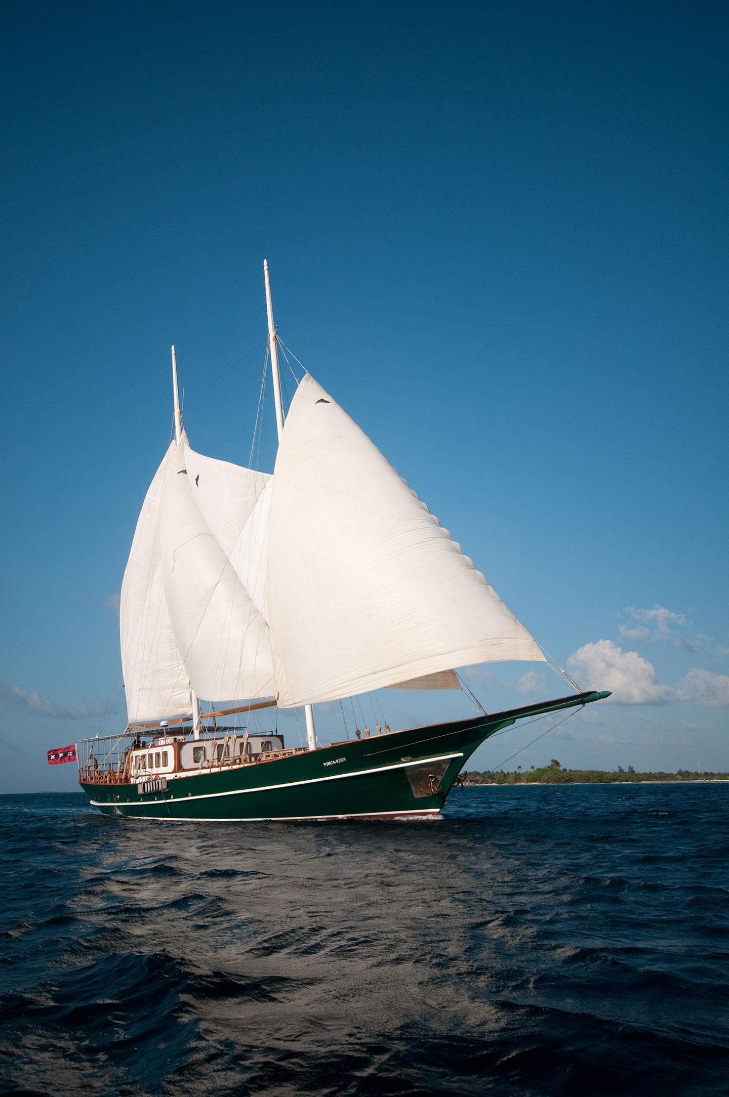 DreamVoyager Sailing