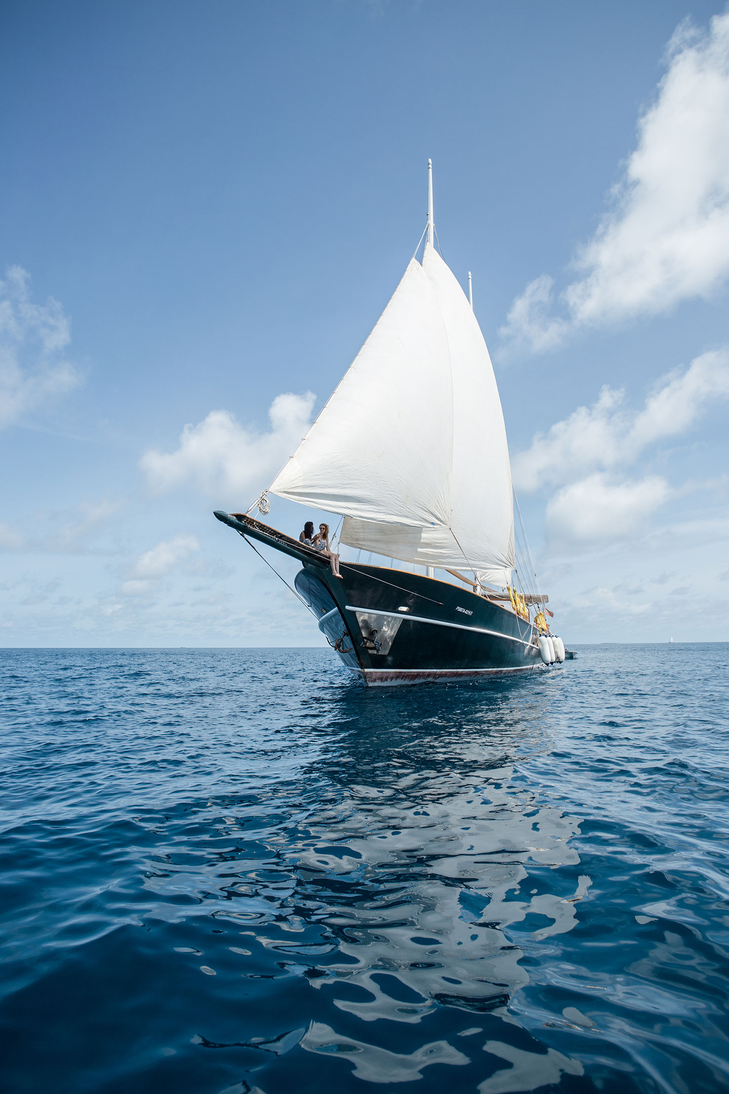 Sailing Dream Voyager